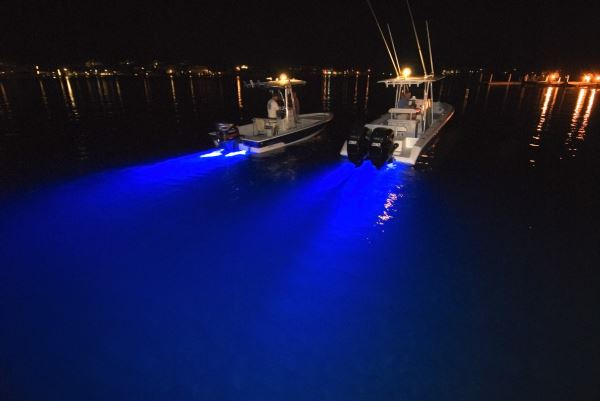 Fishing at night pontoon deck boat magazine for Best light for night fishing